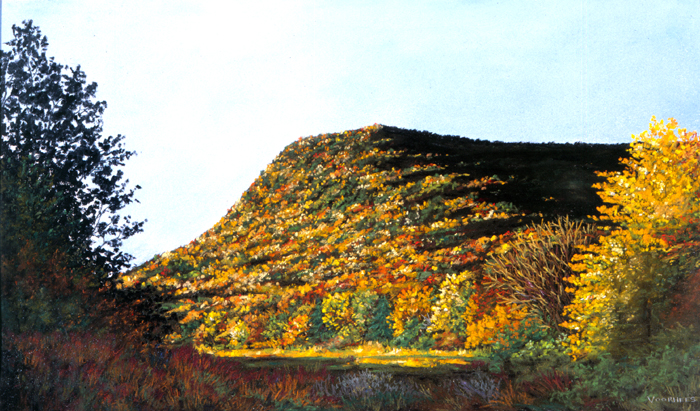 Jane Voorhees - Artist